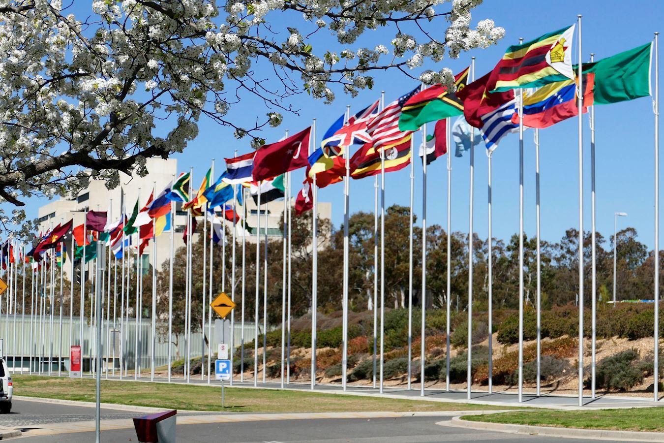 來自三十國逾六百名現任和前任議員共同簽署了一份聯合聲明